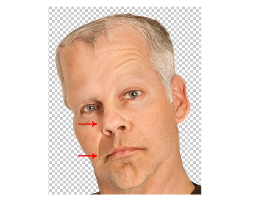 Distort the Face with the Bloat Tool and Pucker Tool