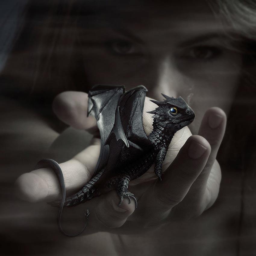 Dragon Photo Manipulation by Franck Beaume