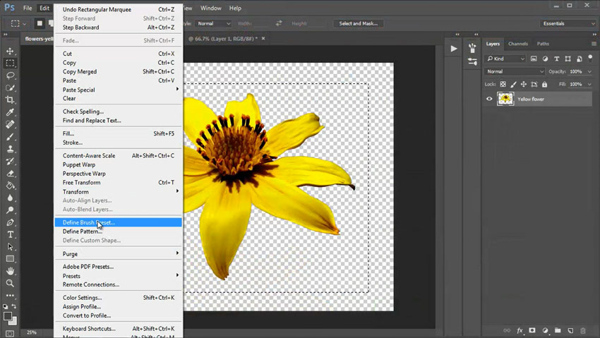Create a Photoshop Brush From an Isolated Object