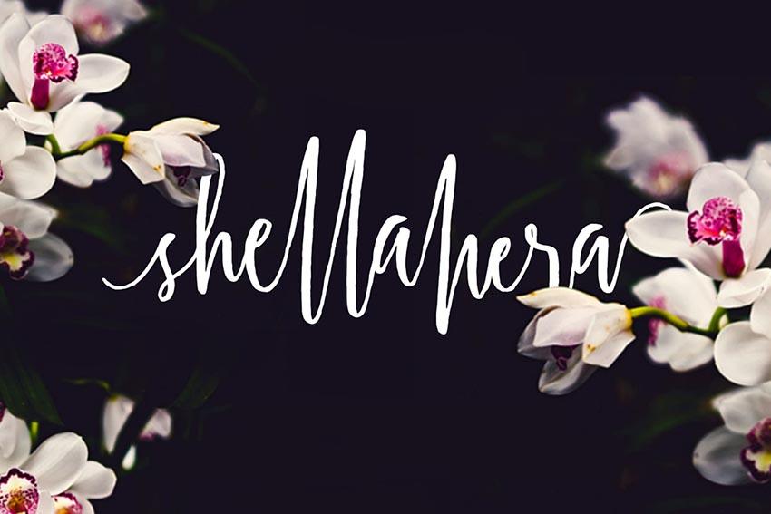 Shellahera Cursive Creative Fonts Pack