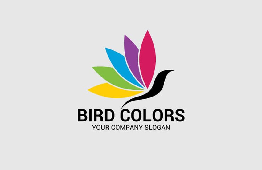 Bird Colors Logo