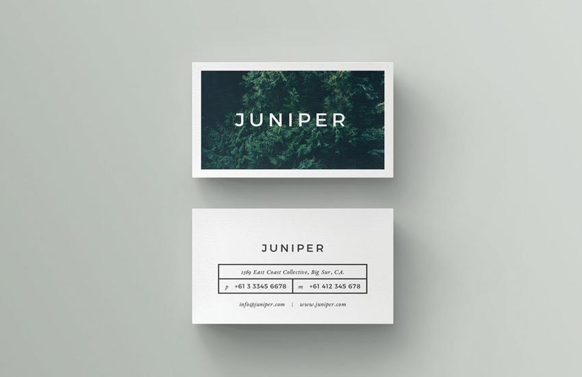 Juniper InDesign Business Card Template