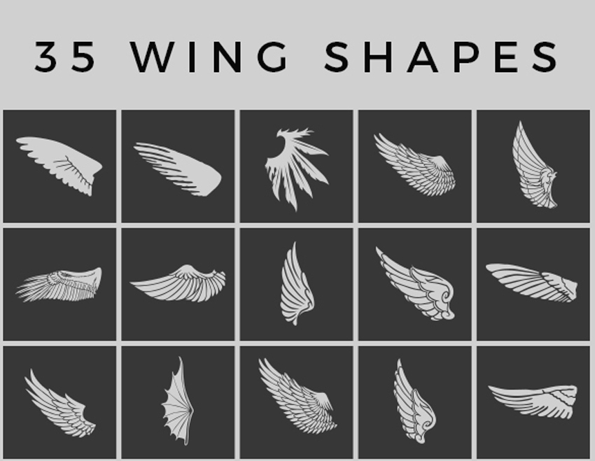 Wing Shapes  Custom Shapes