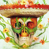 Floral Sugar Skull Photo Manipulation
