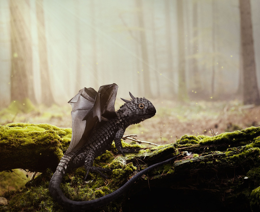 Dragon Photo Manipulation Photoshop Tutorial
