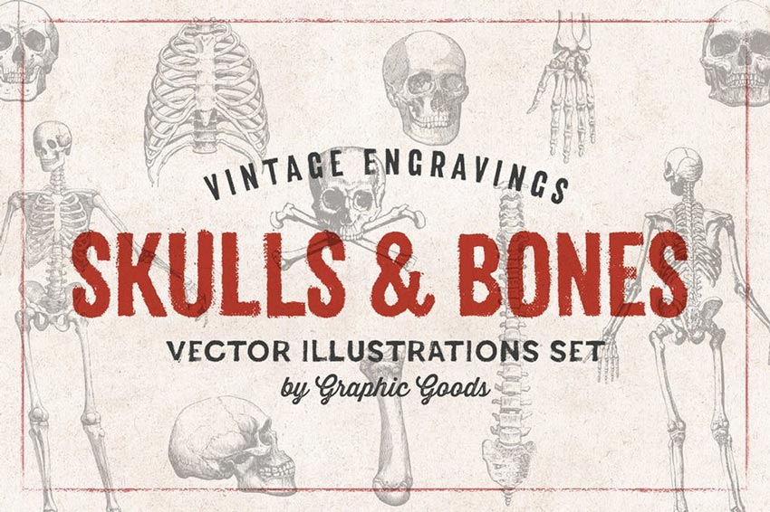 Skulls  Bones - Engraving Style Illustration Set