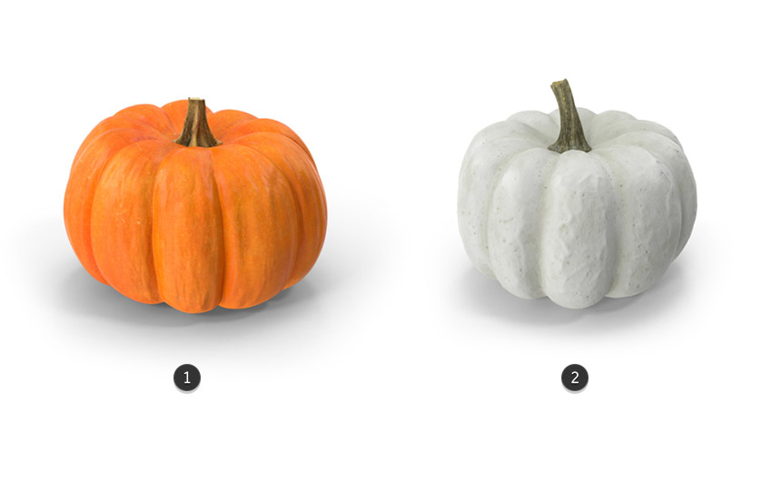 3d pumpkins from Envato Elements