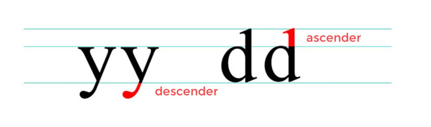 Ascender and Descender - Anatomy of a Letter