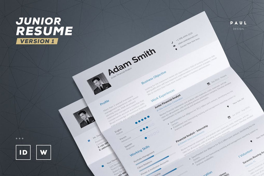 Junior Resume  Cv Template