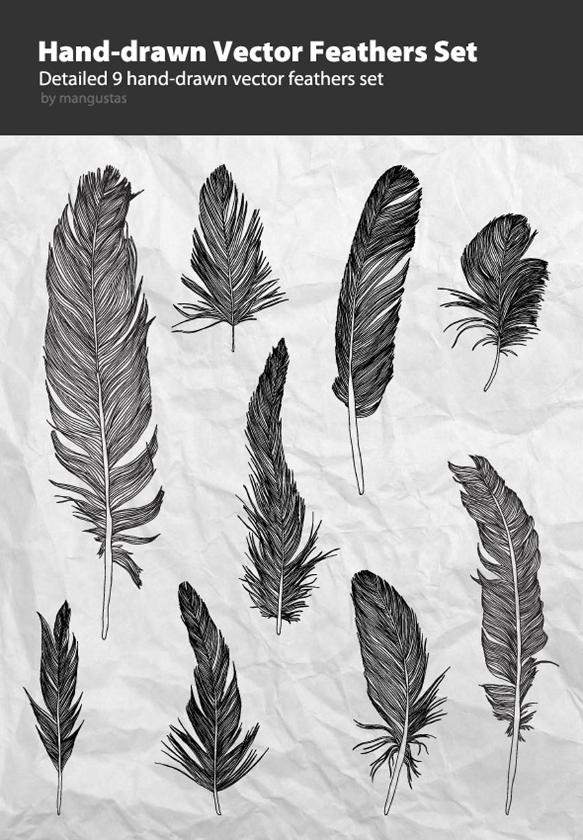 Hand-Drawn Vector Feathers Set