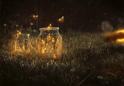 Firefliespre