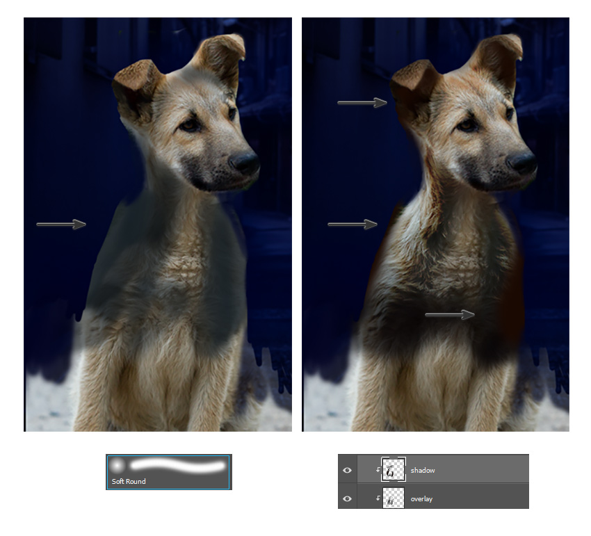 Recolor the dog