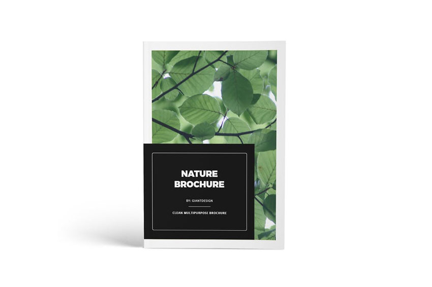 Multipurpose Magazine Brochure