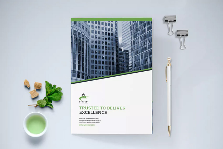 Business Brochure Bi-Fold