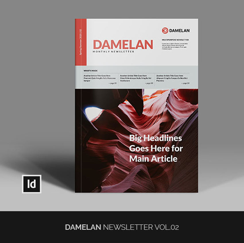 Damelan Newsletter