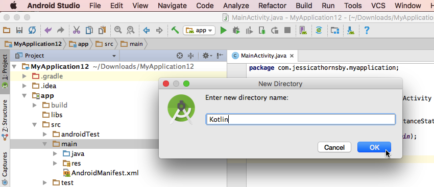 Create a dedicated Kotlin directory