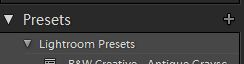 Save new preset button