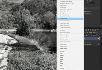 Camera raw filter rasterize