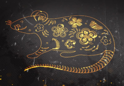 Lunar new year of the rat