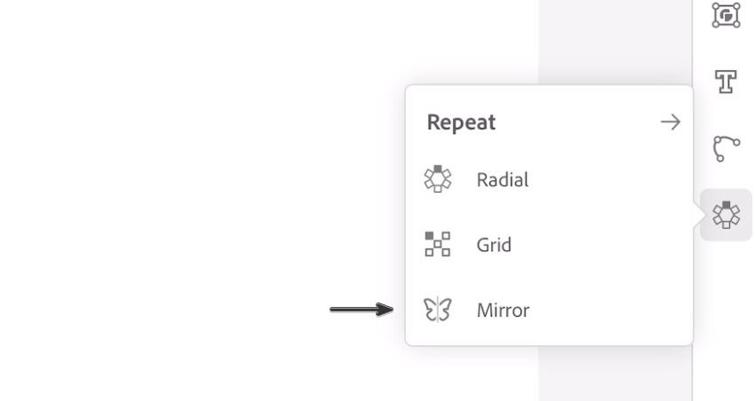 Mirror tool iPad