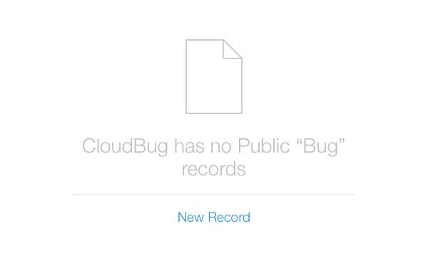 Create a New Record