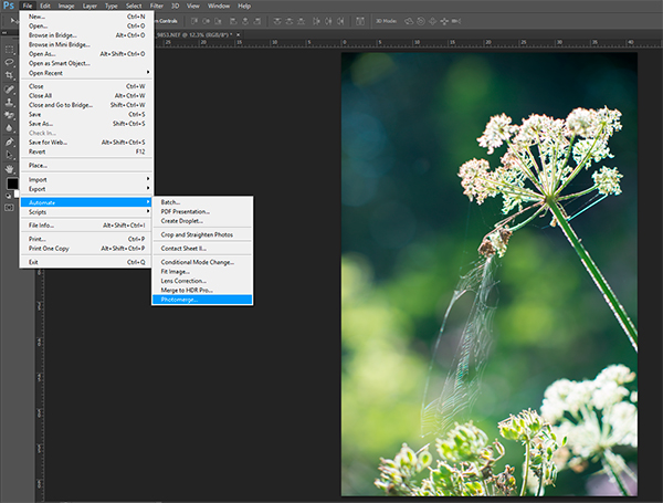 Screen-capture of photomerge in Photoshop