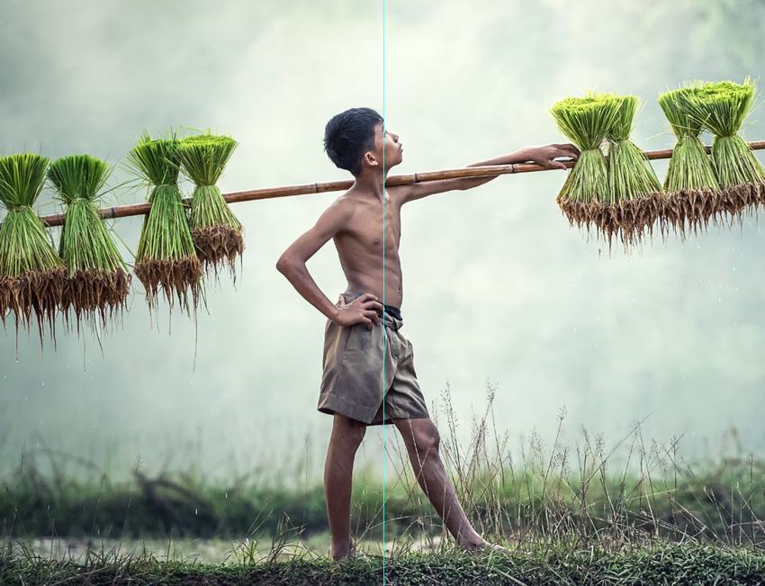 Boy carrying a long pole with harvested grains with Clarity preset applied