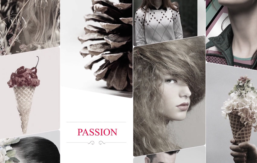 10 Easy Pieces: Fashion Video Packs, Assets and Templates