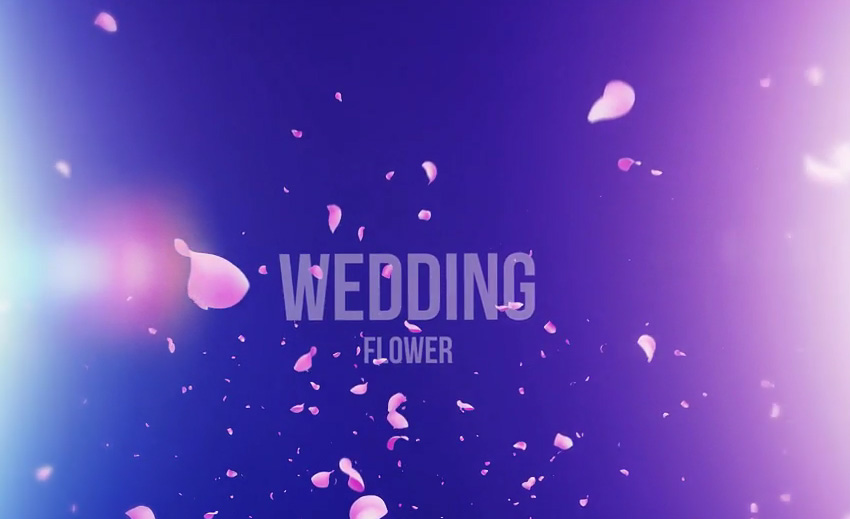 19 Top Wedding Video Templates For After Effects Motion Graphics