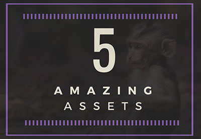 5 amazing assets wildlife preview