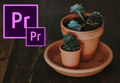 Video Export: How to Pick The Best Settings in Premiere Pro