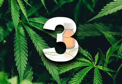 Top 3 cannabis preview
