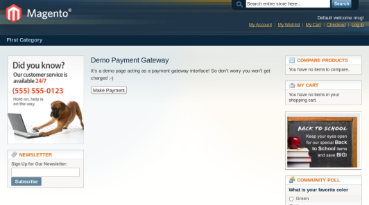 Demo Payment Gateway Page
