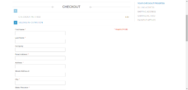 Current Checkout Page