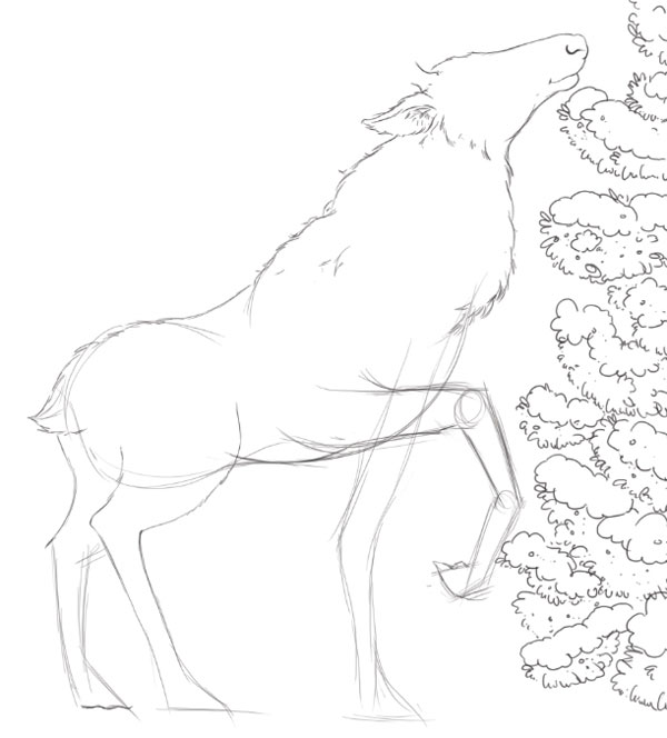 Deer line art - rough leg poses