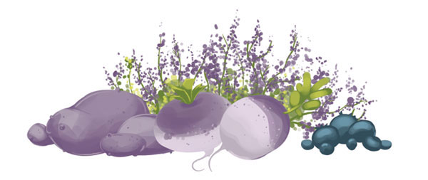 Complete Haggis Food Illustration