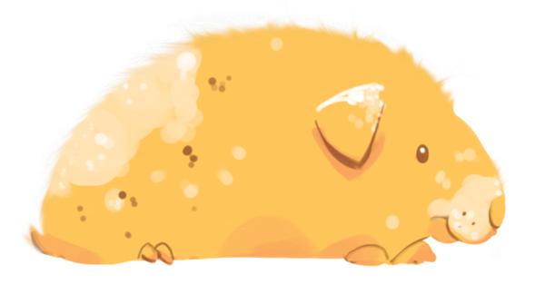 Guinea Pig Fluffy Edge