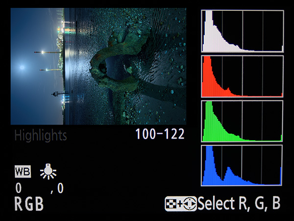 Histogram tool on DSLR camera