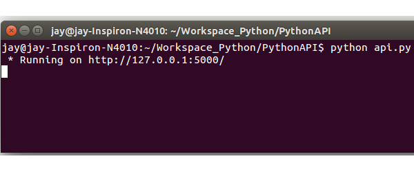 Python API running on localhost port 5000