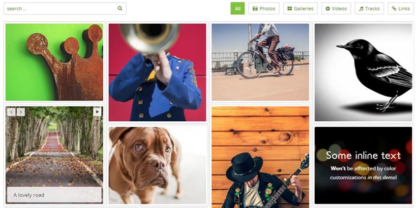 17 Best WordPress Gallery Plugins