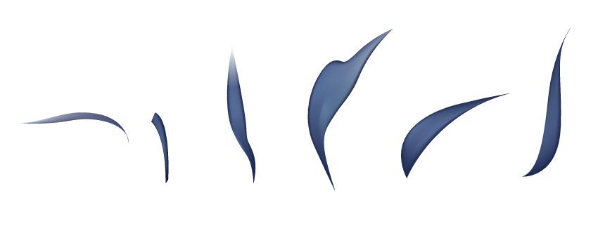 免费AI教程: 如何绘制无量花鸟画