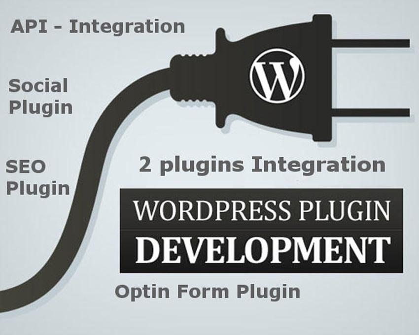 Custom WordPress Plugin Development by Alisaleem252