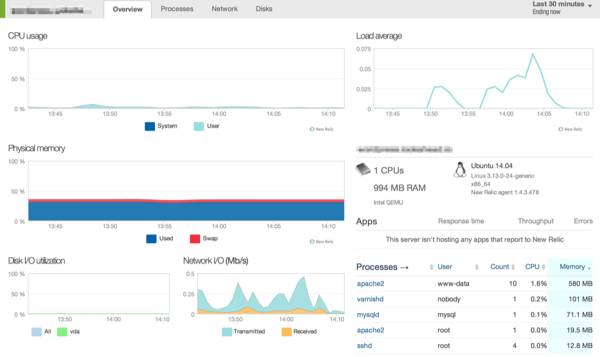 New Relic dashboard in WordPress
