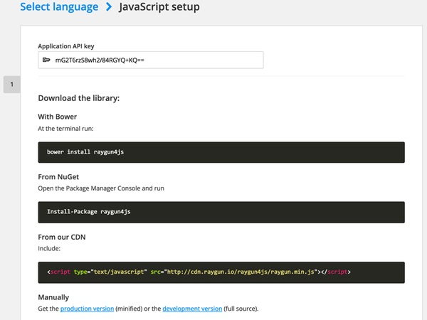 Raygun JavaScript setup screen