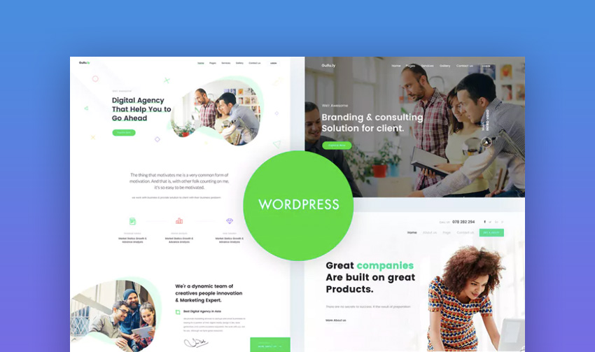 Gullu consultant WordPress theme