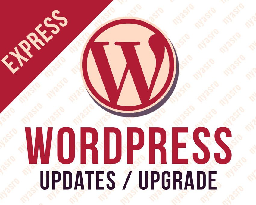 Express Wordpress Themes or Plugins Updates to Latest Version