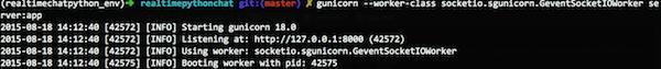 Console run output
