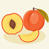 101 Awesome Adobe Illustrator Tutorials