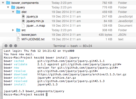 How to Install NPM and Bower
