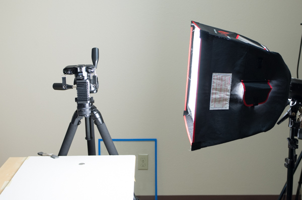 Setting up the camera and light for a high-key macro image